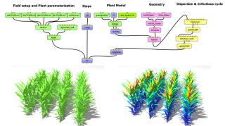 Botany scholarly writing websites