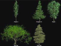 Plant Software Tools