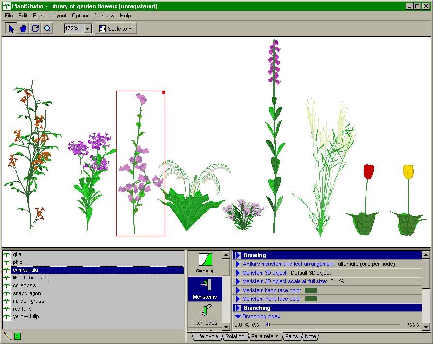 Plant Software Tools